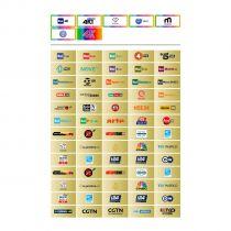 Vorschau: TiVusat Telesystem SmarCam 4K ULTRA HD CI+ inkl. Schwarz Smartkarte