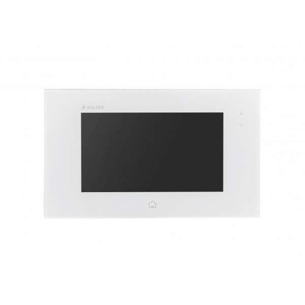 BALTER EVIDA Silber RFID Edelstahl 2-Draht BUS Video Türstation Aufputz 2 Familienhaus Set