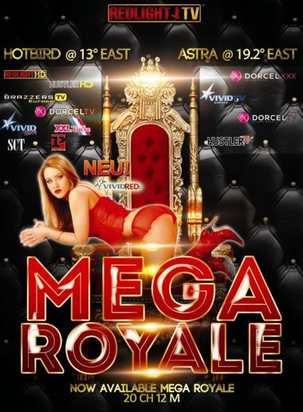 Redlight MEGA Elite ROYALE 13 Sender Viaccess Karte - Laufzeit 12 Monate